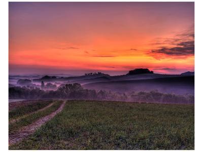 Val d'Arbia at Dawn