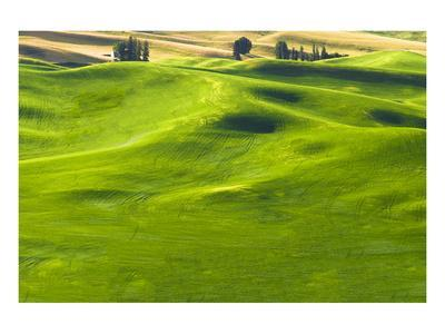 La Palouse Green