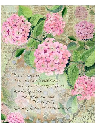 Pink Hydrangea I