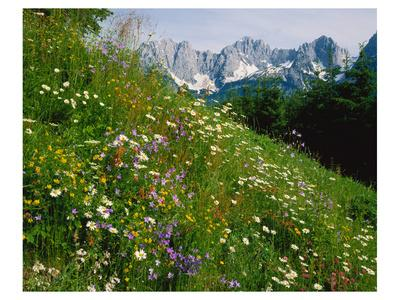 Wilder Kaiser Mountain Austria