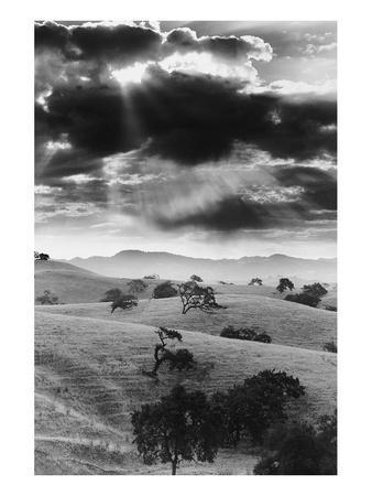 Los Olivo, California