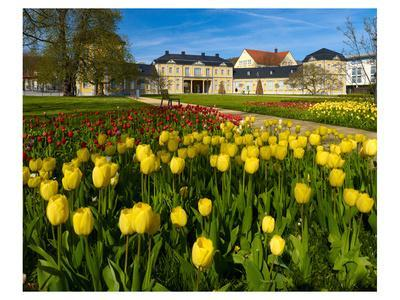 Orangery with Tulip Beds, Gera, Thuringia, Germany