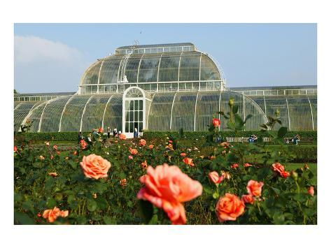 Palm House In The Royal Botanic Gardens, Kew, London, South Of England,  Great Britain