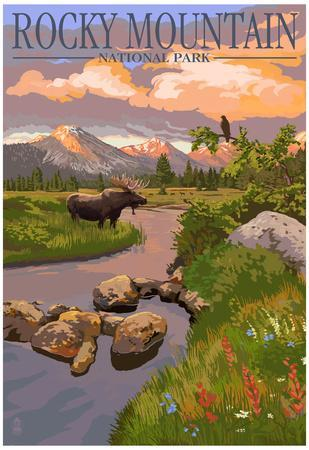 Moose and Meadow - Rocky Mountain National Park