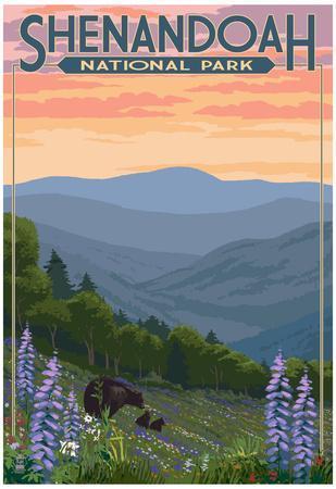 Shenandoah National Park, Virginia - Black Bear and Cubs Spring Flowers
