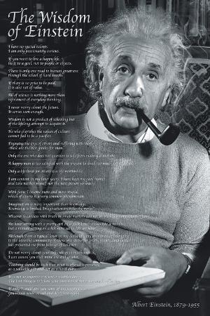 The Wisdom of a Genius