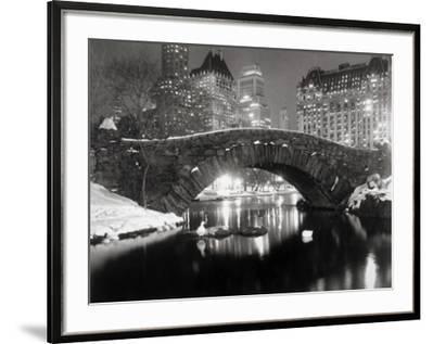 New York Pond in Winter