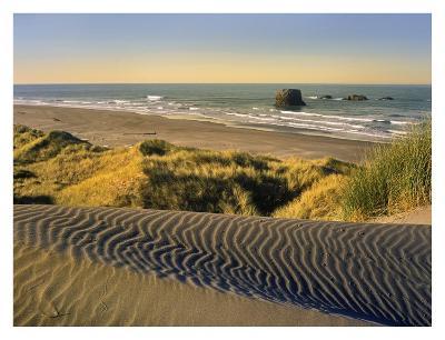Coastline, Pistol River Beach, Oregon