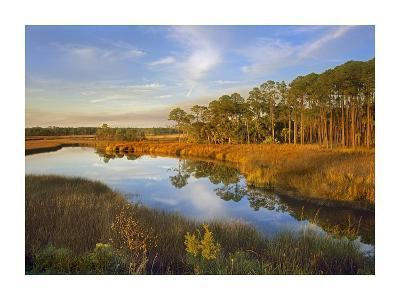 Lake near Apalachicola, Florida