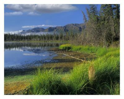 Nutzotin Mountains and boreal forest reflected in receding lake, Alaska
