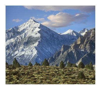 Mount Tom, Sierra Nevada, John Muir Wilderness, Inyo National Forest, California