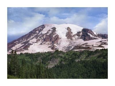 Mount Rainier with coniferous forest, Mount Rainier National Park, Washington