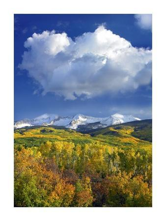 East Beckwith Mountain flanked by fall colored Aspen forests under cumulus clouds, Colorado