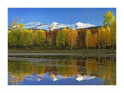 Full moon over East Beckwith Mountain rising above fall colored Aspen forests, Colorado