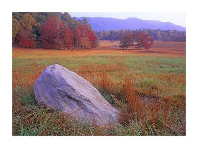 Boulder and autumn colored deciduous forest, Great Smoky Mountains National Park, Tennessee