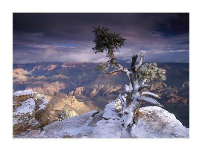 South Rim of Grand Canyon from Yaki Point, Grand Canyon National Park, Arizona