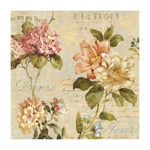 Fleur Paris I Giclee Print By Deborah Devellier At Allposters Com