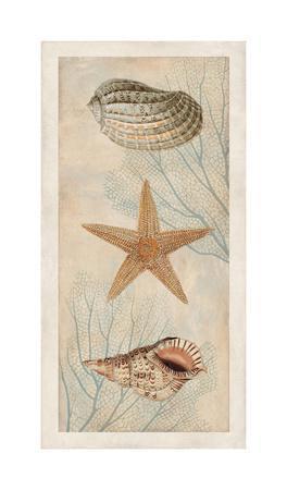Ocean Companions I