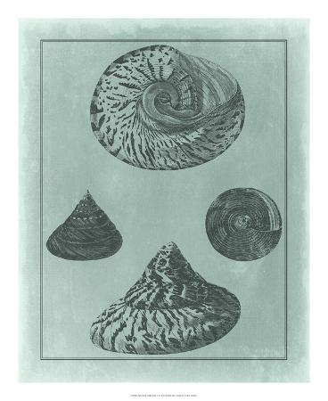 Spa Shell Collection II