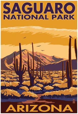 Saguaro National Park, Arizona