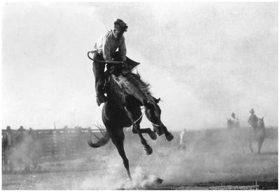 Cowboy Riding Bronco In Burns, Or Rodeo Photograph - Burns, Or