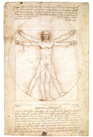 Vitruvian Man 1492 Leonardo Da Vinci Art Poster
