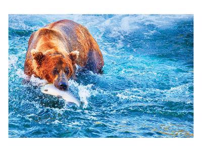 Natural Splendors Alaska III