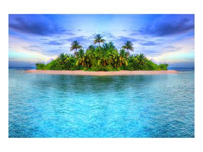 Tropical Island Of Maldives