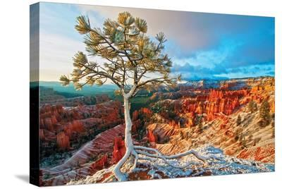 Grand Canyon - Winter Sunrise