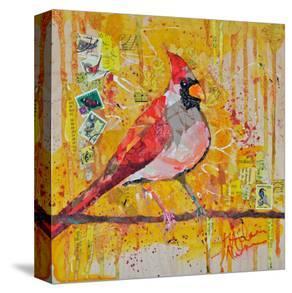 Femail Cardinal