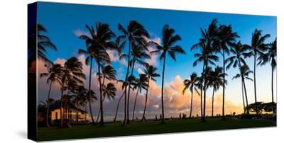 Hawaii Dreaming III