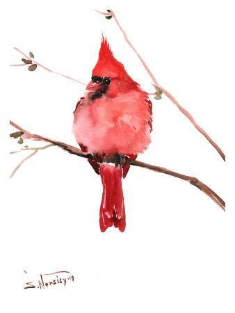 Red Cardinal 4