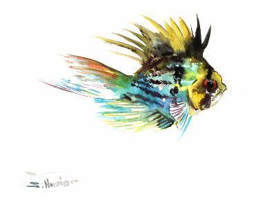 Balloon Ram Fish
