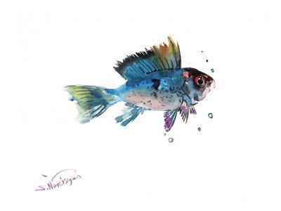 Ram Fish