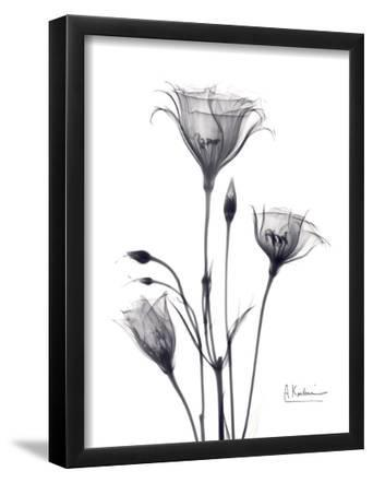 Bouquet of Gentian in Black and White