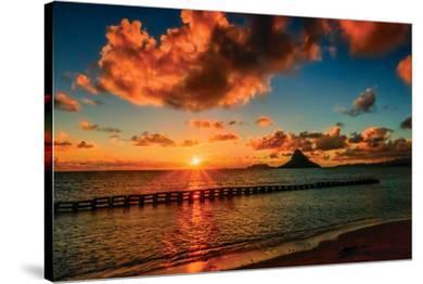 Hawaii Dreams V