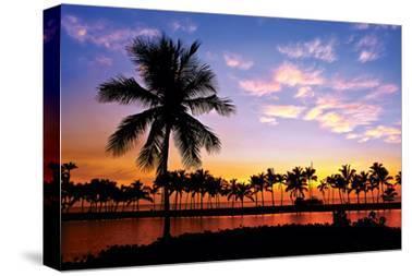 Hawaii Dreams VI