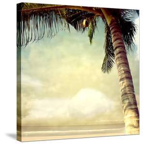 Hawaiian Memories I