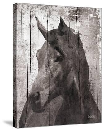Horse Lemuse