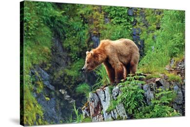 Natural Splendors Alaska 1