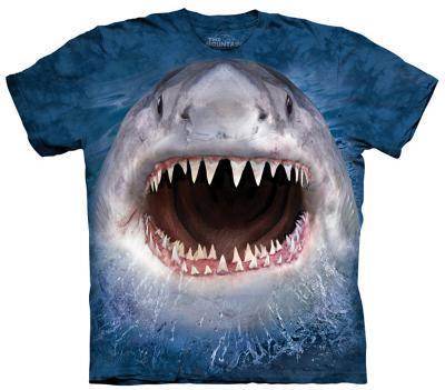 Youth: Wicked Nasty Shark