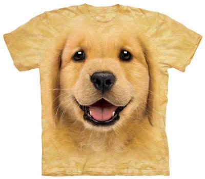Youth: Golden Retriever Puppy