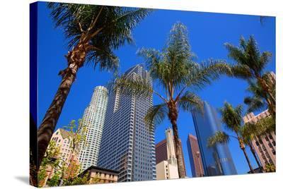 LA-Pershing Square Palm Tress