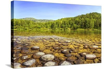Lebed River at Turochak Russia