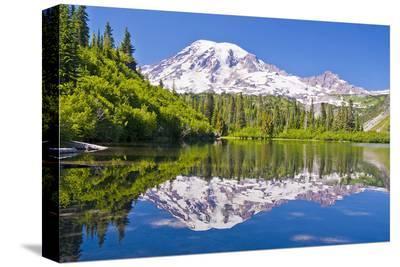 Mt Rainier and Bench Lake