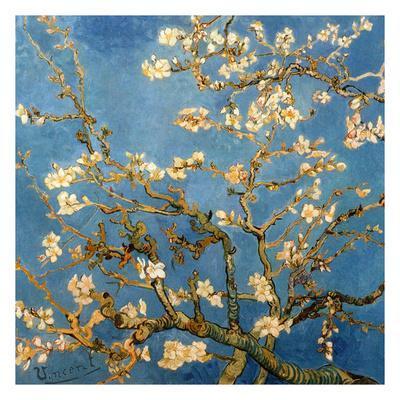 Branches fleuries d'amandier (Détail)