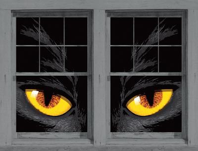 Yellow Eyed Cat WOWindow Poster