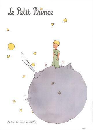 Le Petit Prince et son Asteroide
