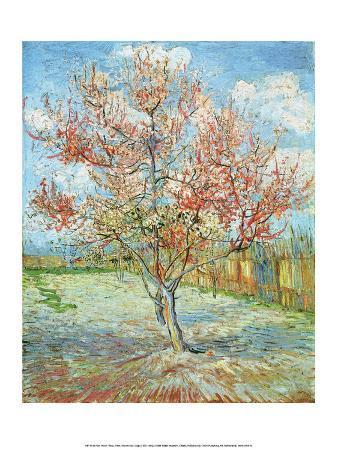 Pink Peach Tree,