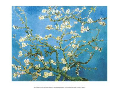 Branches of an Almond Tree in Bloom, 1890